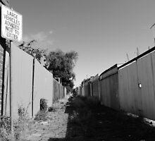 Bleak Alley by Clare McClelland