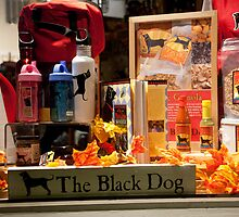 Black Dog Shop by phil decocco