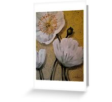 White Iceland Poppies Greeting Card
