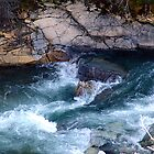 Rapids, Cameron Creek by Jann Ashworth
