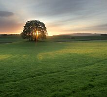 Malham Morning Glory by SteveMG