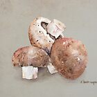 Mushrooms by arline wagner