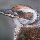 Kookaburra by Sally Ford