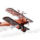 Breitling Wingwalkers by Angela E.L. Clements