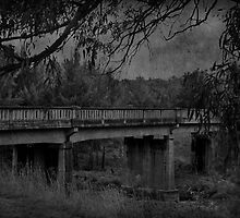 Sofala Road Bridge by garts