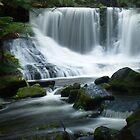 Horseshoe Falls, Tasmania by CezB