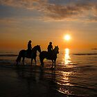 Horses at Ogmore by kgvuk