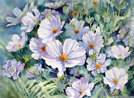 Cosmos and Poppy seedheads by Ann Mortimer