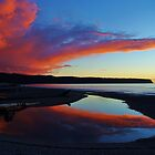 """""""red""""     bruce bay, south westland, new zealand by rina  thompson"""