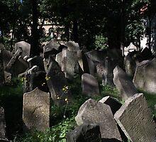 Old Jewish Cemetery by annalisa bianchetti