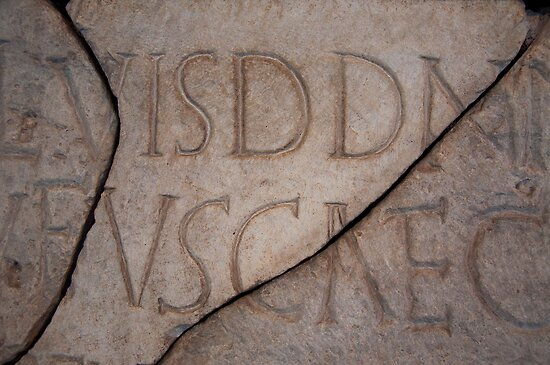 Roman Coliseum Typography by titus
