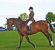 Dressage at Country show by Elaine123