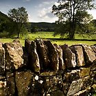 Yorkshire dry stone wall II by Neil Messenger
