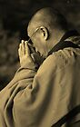 the dalai lama. aotearoa - new zealand by tim buckley | bodhiimages photography