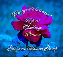 gorgeous flower card banner challenge by vigor