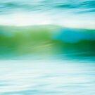 Wave in Motion by Lynnette Peizer