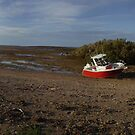 Tides out! Beached on Roberts Island, Exmouth Gulf by BigAndRed