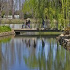 Bridge at Floriade, Canberra 2010 by Stephen Mitchell