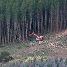 Harvester at work by MDC DiGi PiCS
