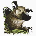Otter by eleni dreamel