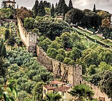 Walls of Florence by Angela King-Jones