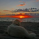 Relaxing and watching the sunset by Trine
