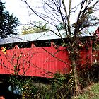 Aline Covered Bridge_2 by Hope Ledebur