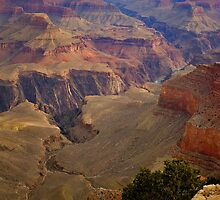Grand Canyon National Park Birds Eye View by photosbyflood