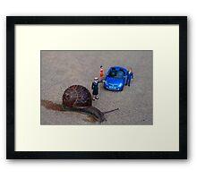 Stop: Snail Crossing Framed Print