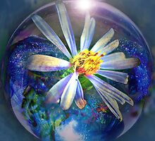 Flower in a Bubble by Brenda Boisvert