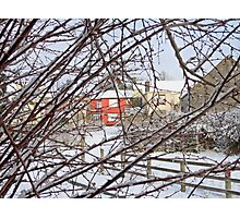 The Coldest Winter #3 Photographic Print