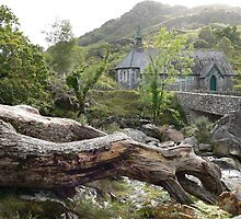 Derrycunnihy Church,Killarney National Park,Co.Kerry,Ireland. by Pat Duggan
