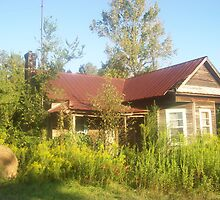 The Old Homeplace - McCall Creek, MS by Dan McKenzie
