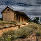 The Old Station by Rod Wilkinson