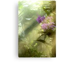Rainforest! Canvas Print