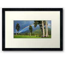 """""""rainbow I""""  flagstaff hereford stud, south westland, nz Framed Print"""