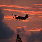 Red Sky At Flight by Franco De Luca Calce