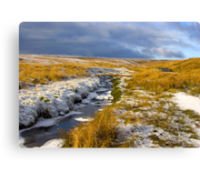 Birkdale Beck Canvas Print