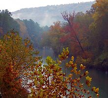 Mulberry River in Fall, Oark, Arkansas by David  Hughes