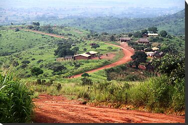 Orange Winding Road - Ring Road, Cameroon by helenlloyd