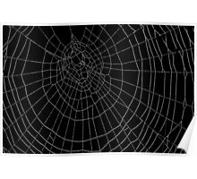 The Art of the Spider Poster