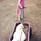 Mikey's Wagon Ride by ibjennyjenny