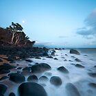 Moon Rocks by David Haworth