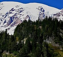 Mt. Rainier by Debbie Stika