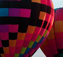 Hot Air Balloons by Brenda Burnett