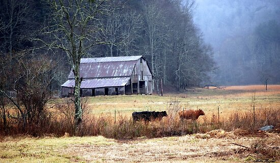 Mountain Farm by Mattie Bryant