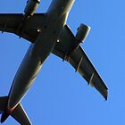 Fly by AWardPhotograph