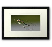 tight rope walker Framed Print