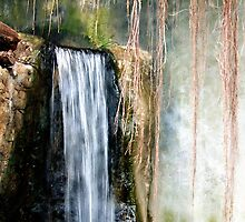 Maiden's Hair Falls by RC deWinter