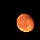 Wow Look At The Moon After The Equinox, by Linda Miller Gesualdo